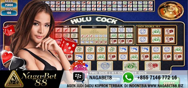 daftar dadu hulu cock